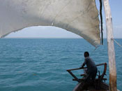 The tides, dhow, trip, sea, excursion